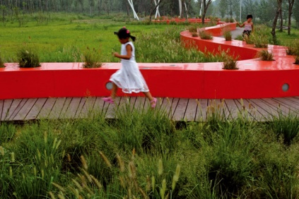 Designed Ecologies - The Landscape Architecture of Kongjian Yu