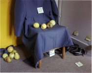 Still Life / Work Life - From the Hasselblad Foundation Collection 1