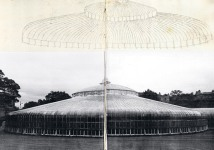 Greenhouse Studies by Philippe Weisbecker