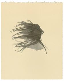 Lorna Simpson - Works on Paper